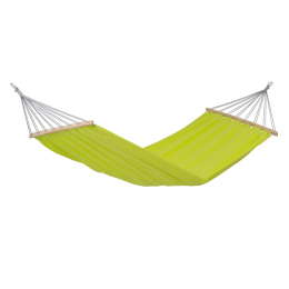 Miami Single Hammock | Kiwi