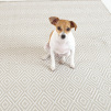 Diamond Indoor & Outdoor Rug | Platinum/white 5'x3'